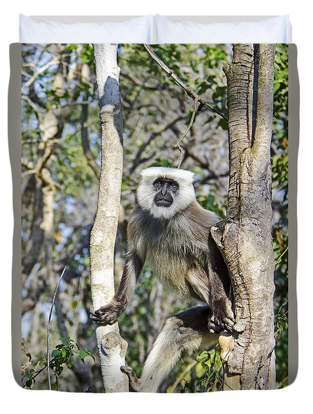 Duvet Cover featuring the photograph Langur Posing by Pravine Chester