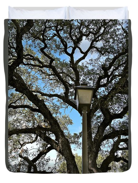 Duvet Cover featuring the photograph Lantern Meets The Oak by Michele Myers