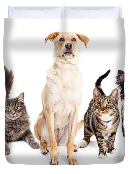 Large Group Of Cats And Dogs Together Duvet Cover