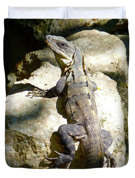 Duvet Cover featuring the photograph Large Lizard M by Francesca Mackenney