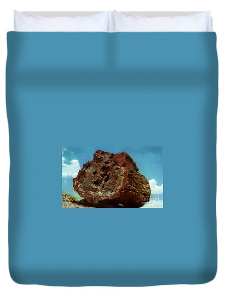 Large Petrified Log  Duvet Cover by Ruth  Housley