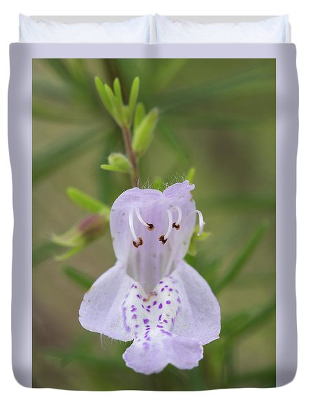 Largeflower False Rosemary #1 Duvet Cover