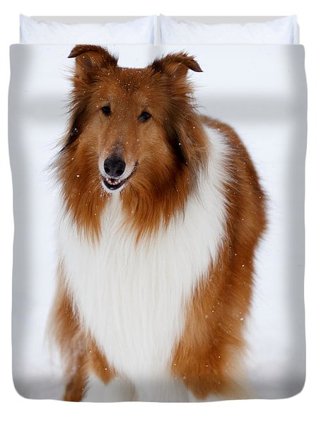 Lassie Enjoying The Snow Duvet Cover