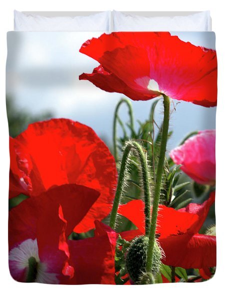 Last Poppies Of Summer Duvet Cover by Stephen Melia