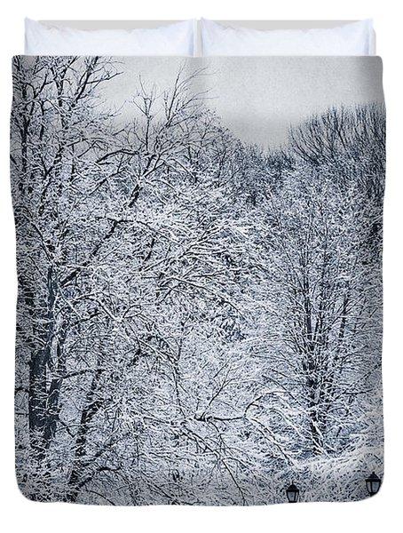 Last Winter's Dream Duvet Cover