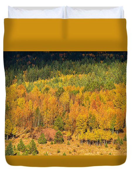 Late Afternoon Gold Duvet Cover by Bijan Pirnia