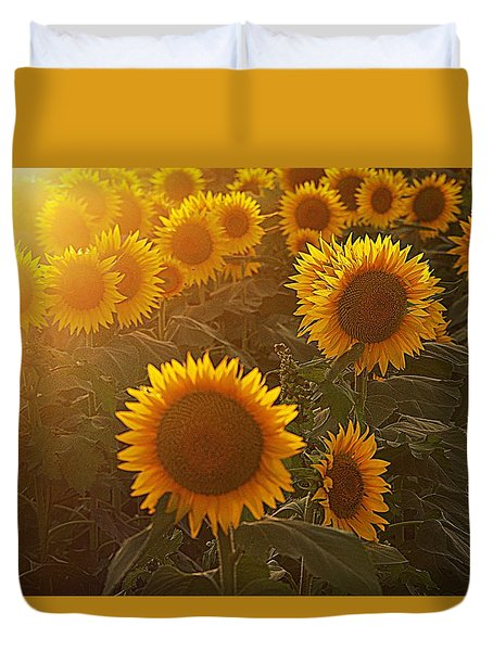 Late Afternoon Golden Glow Duvet Cover