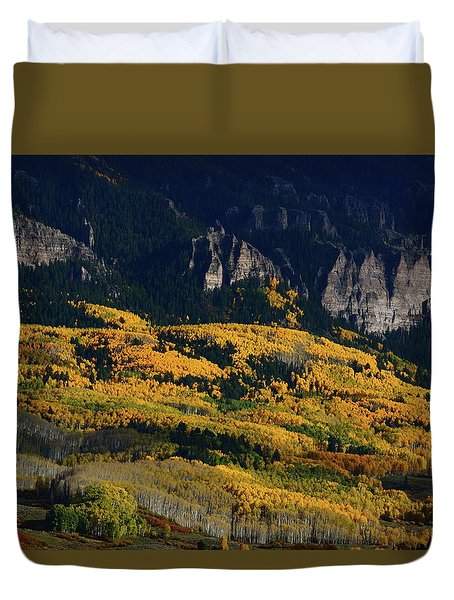 Late Afternoon Light On Aspen Groves At Silver Jack Colorado Duvet Cover