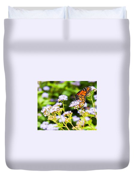 Late In The Season Butterfly Duvet Cover by Edward Peterson