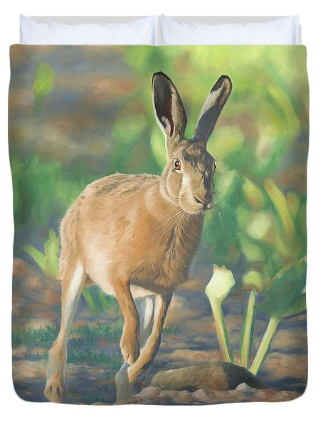 Late Light-hare Duvet Cover by Clive Meredith