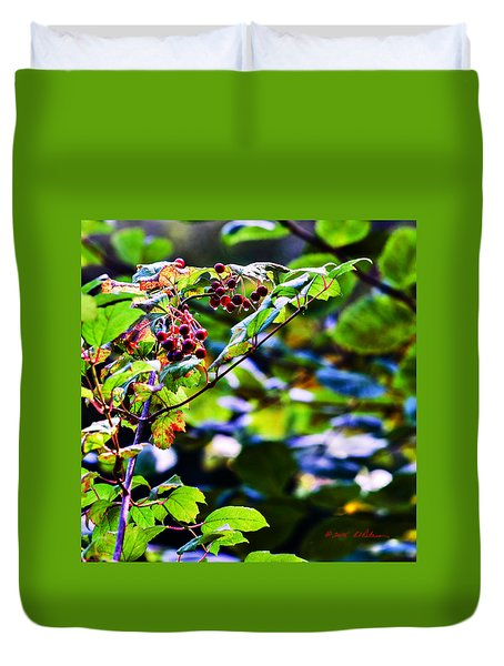 Late Summer Rain Duvet Cover by Edward Peterson