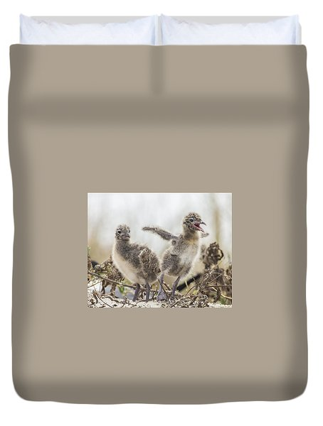 Duvet Cover featuring the photograph Laughing Gull Chicks by Paula Porterfield-Izzo