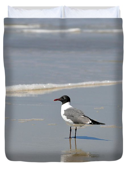 Laughing Gull Reflecting Duvet Cover by Al Powell Photography USA