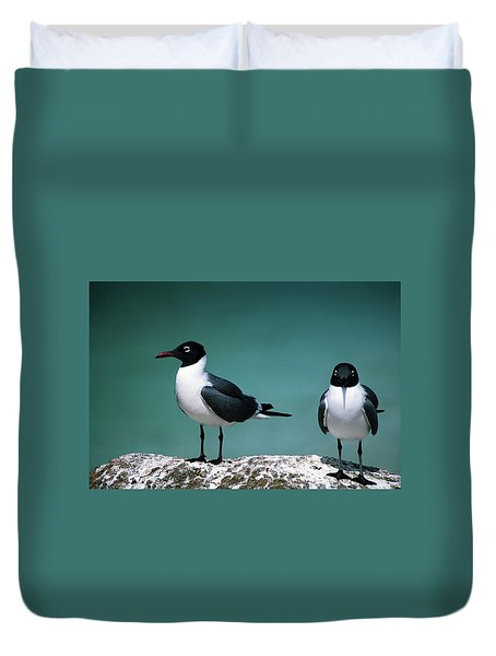 Laughing Gulls Duvet Cover by Sally Weigand