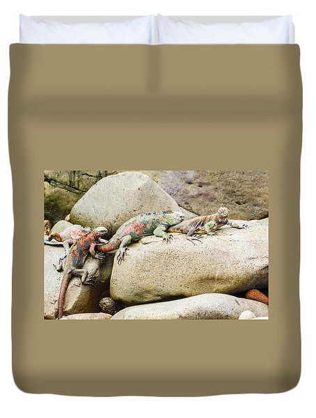 Lava Lizard On Galapagos Islands Duvet Cover