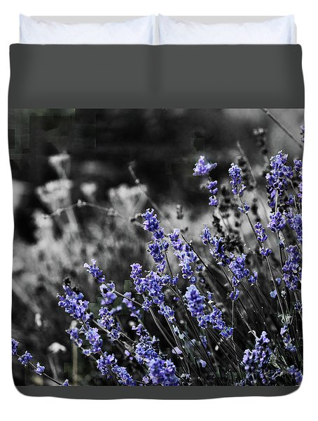 Lavender B And W Duvet Cover