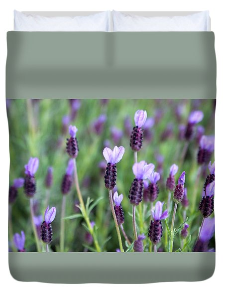Duvet Cover featuring the photograph Lavender by Erin Kohlenberg