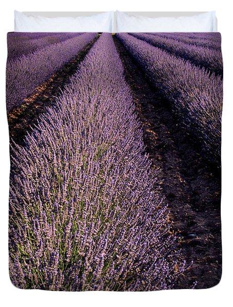 Lavender Field Provence France Duvet Cover