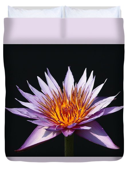 Lavender Fire 1 Duvet Cover
