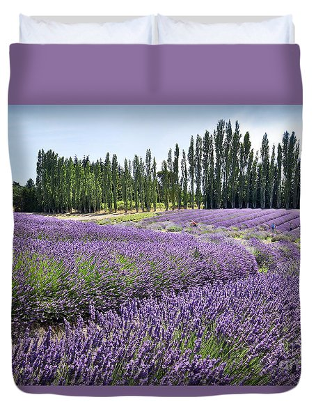 Lavender Hills Duvet Cover