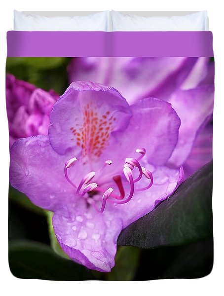 Lavender Rhododendron Duvet Cover by Rona Black