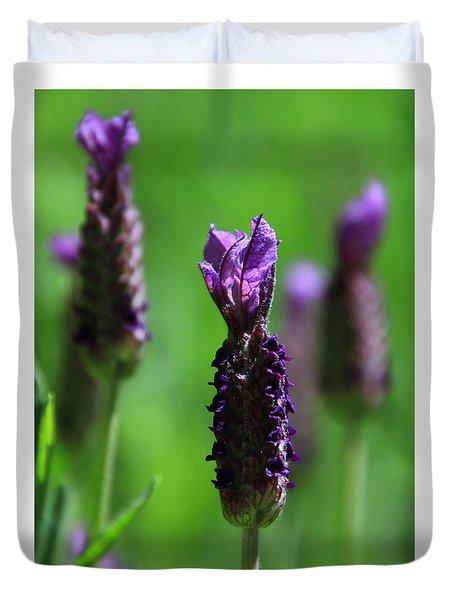 Lavender Spike Duvet Cover