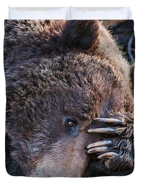 Lazy Bear Duvet Cover