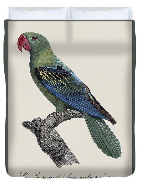 Le Perroquet A Bec Couleur De Sang / Great-billed Parrot - Restored 19thc. Illustration By Barraband Duvet Cover