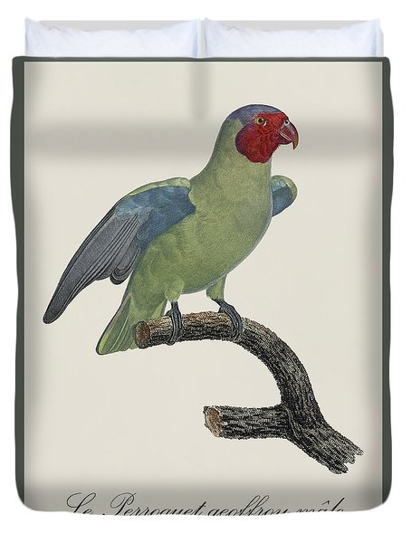 Le Perroquet Geoffroy Male / Red Cheeked Parrot - Restored 19th C. By Barraband Duvet Cover by Jose Elias - Sofia Pereira