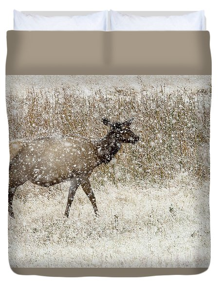 Lead Cow Duvet Cover
