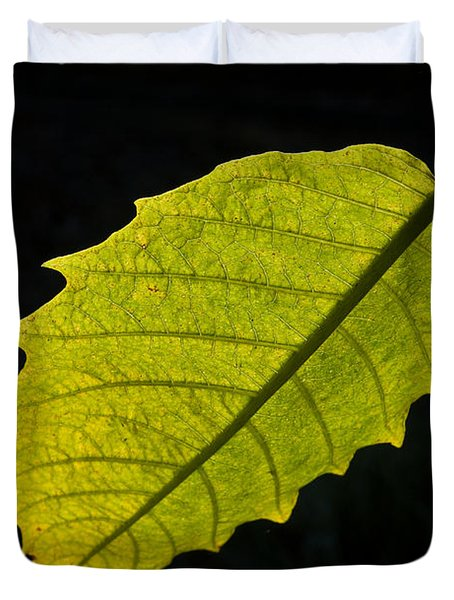 Leaf Aglow Duvet Cover