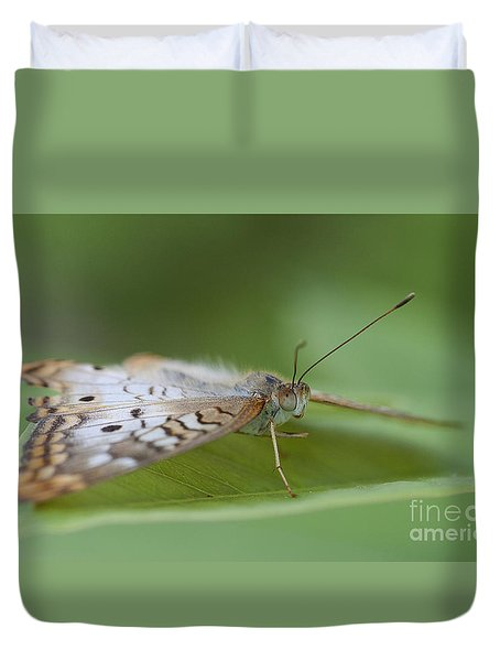 Leaf And White Peacock Duvet Cover by Ruth Jolly