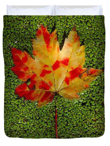 Leaf Floating On Duckweed Duvet Cover