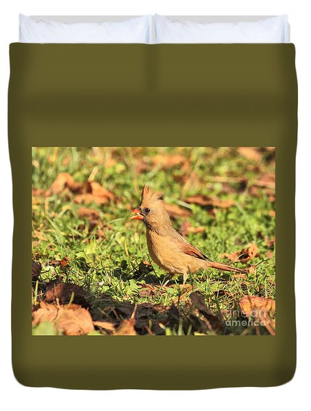 Leafy Cardinal Duvet Cover by Debbie Stahre