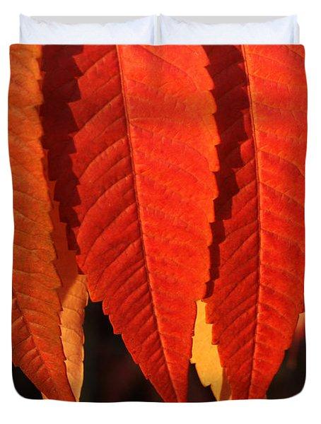 Leafy Valance Duvet Cover