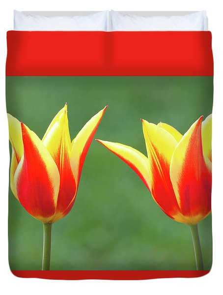 Duvet Cover featuring the photograph Lean On Me by Ram Vasudev