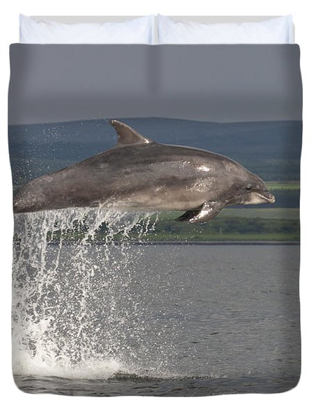 Leaping Bottlenose Dolphin  - Scotland #39 Duvet Cover
