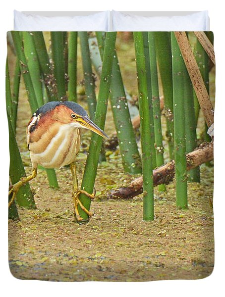 Least Bittern With Large Feet Duvet Cover