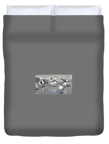 Least Terns Duvet Cover by Melinda Saminski