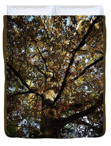 Leaves And Branches Duvet Cover