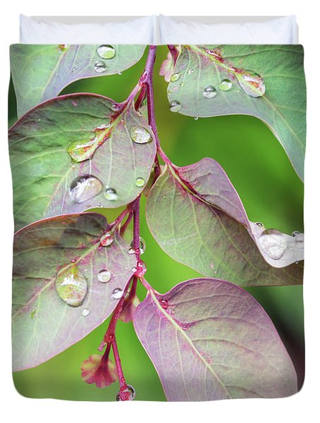 Leaves And Raindrops Duvet Cover