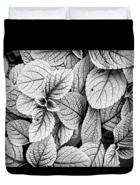 Leaves Black And White - Nature Photography Duvet Cover