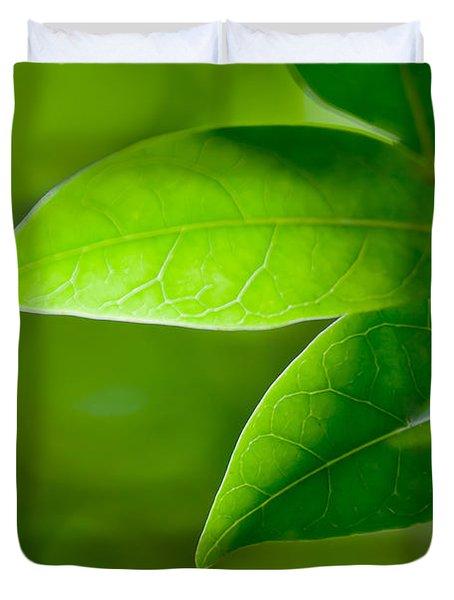 Leaves Of Green Duvet Cover