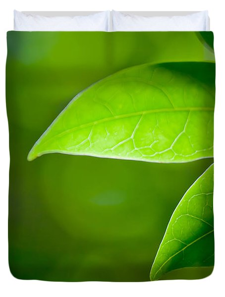 Leaves Of Green Duvet Cover