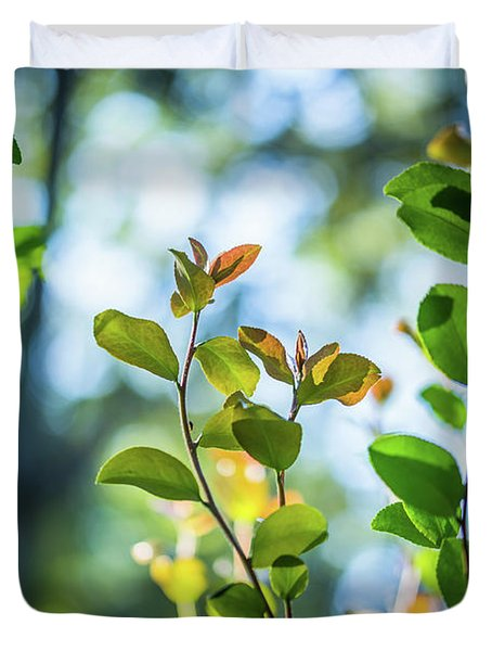 Leaves Reaching Out Duvet Cover