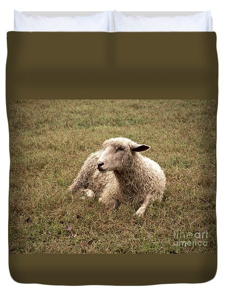 Leicester Sheep In The Dewy Grass Duvet Cover