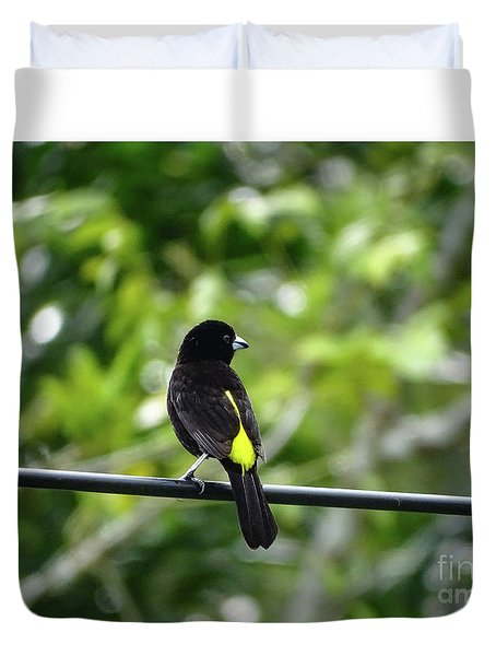Lemon-rumped Tanager Duvet Cover
