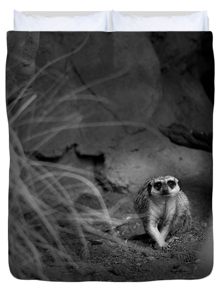 Lemur Duvet Cover