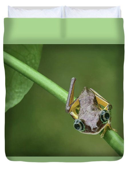 Duvet Cover featuring the photograph Lemur Tree Frog - 1 by Nikolyn McDonald