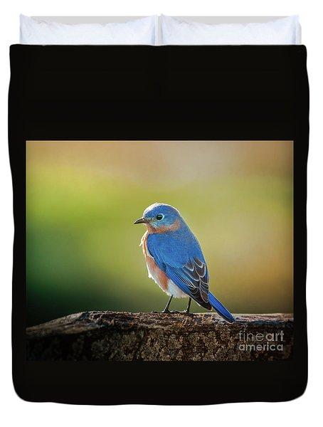 Lenore's Bluebird Duvet Cover